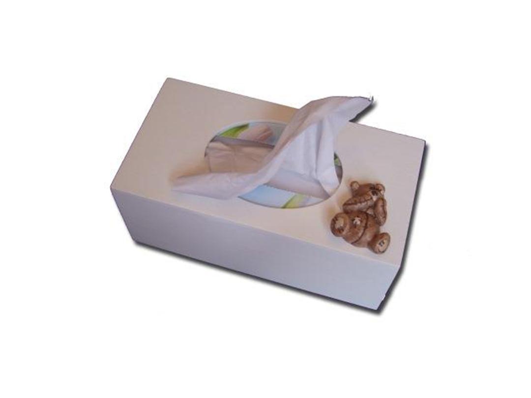 Scruffy Bear Tissue Box - Dream Furniture